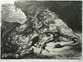 engraving Lion devouring an Arab horse [Click here to see more information about this item]